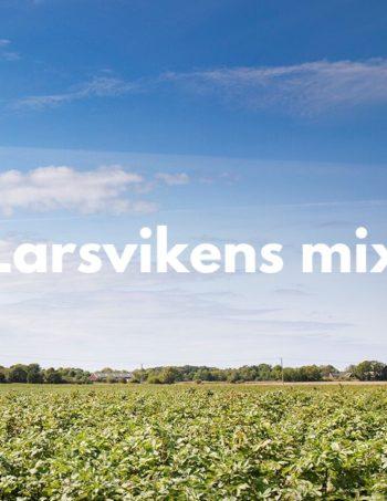 Larsvikens mix